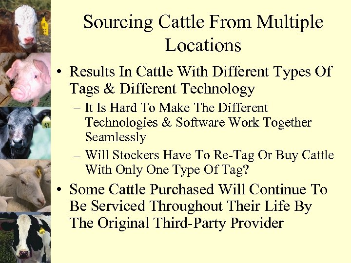 Sourcing Cattle From Multiple Locations • Results In Cattle With Different Types Of Tags