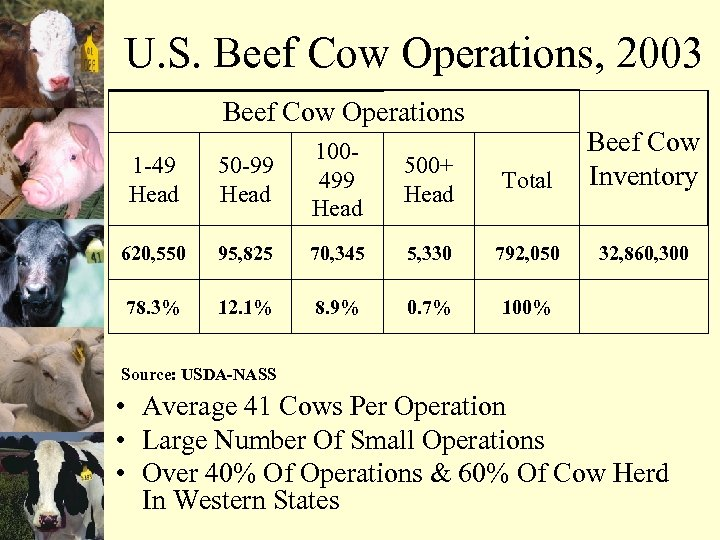 U. S. Beef Cow Operations, 2003 Beef Cow Operations 500+ Head Total Beef Cow