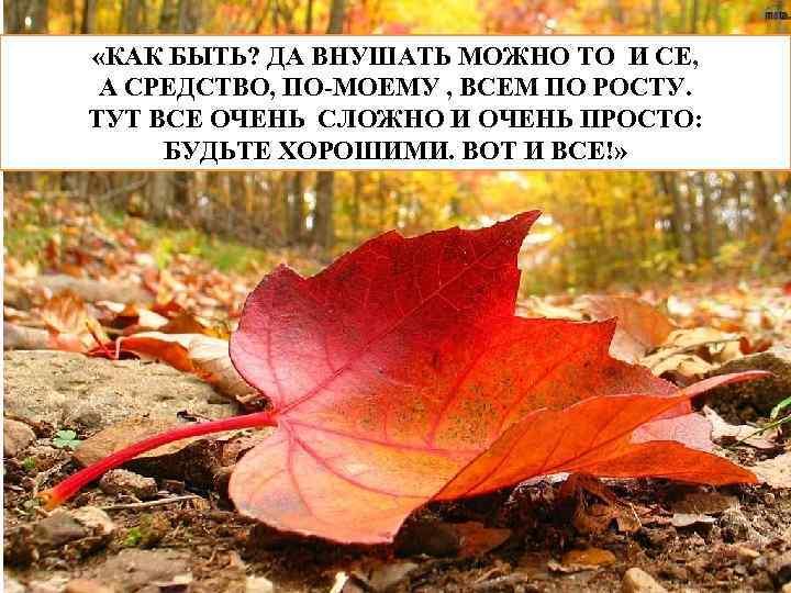 «КАК БЫТЬ? ДА ВНУШАТЬ МОЖНО ТО И СЕ, А СРЕДСТВО, ПО-МОЕМУ , ВСЕМ