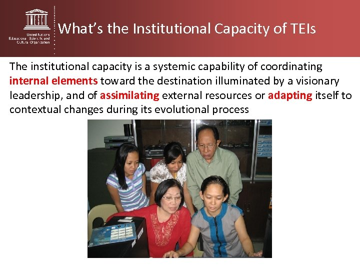 What's the Institutional Capacity of TEIs The institutional capacity is a systemic capability of