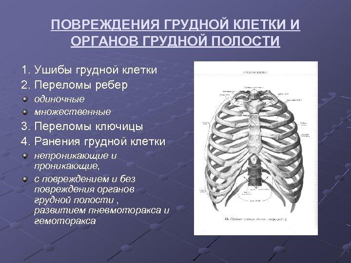 ПОВРЕЖДЕНИЯ ГРУДНОЙ КЛЕТКИ И ОРГАНОВ ГРУДНОЙ ПОЛОСТИ 1. Ушибы грудной клетки 2. Переломы ребер
