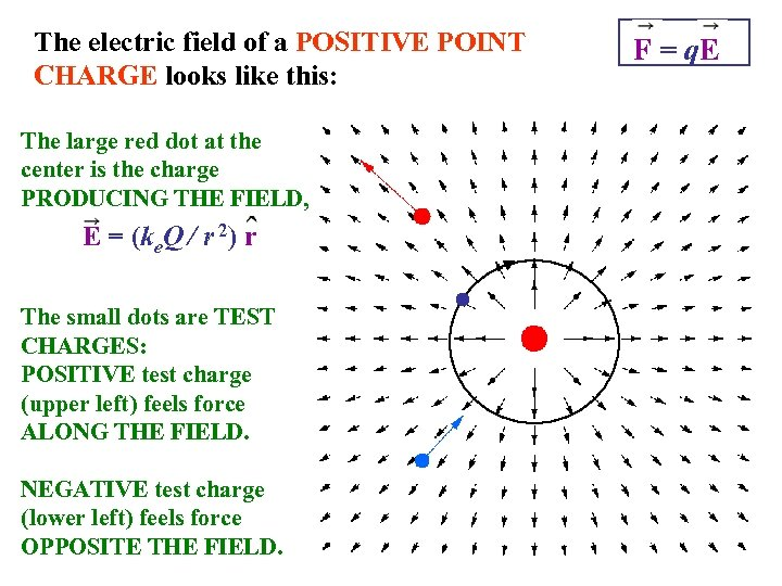 The electric field of a POSITIVE POINT CHARGE looks like this: The large red
