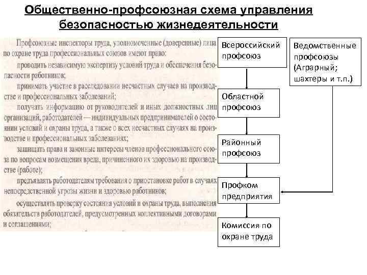 Общественно-профсоюзная схема управления безопасностью жизнедеятельности Всероссийский профсоюз Областной профсоюз Районный профсоюз Профком предприятия Комиссия
