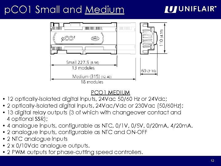p. CO 1 Small and Medium PCO 1 MEDIUM • 12 optically-isolated digital inputs,