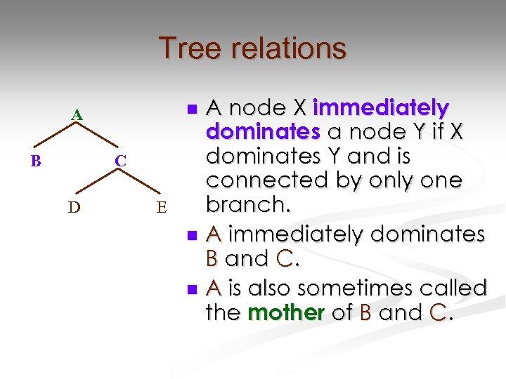 Tree relations B C D A node X immediately dominates a node Y if