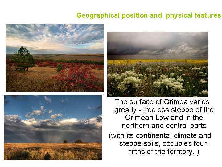 Geographical position and physical features The surface of Crimea varies greatly - treeless steppe
