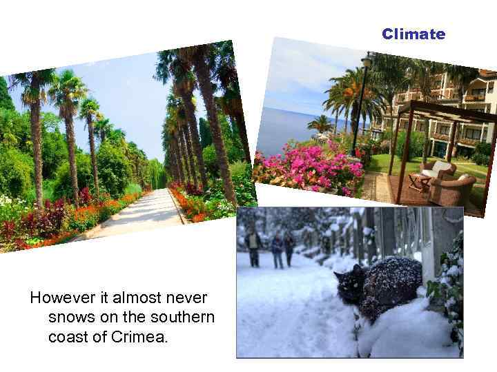 Climate However it almost never snows on the southern coast of Crimea.