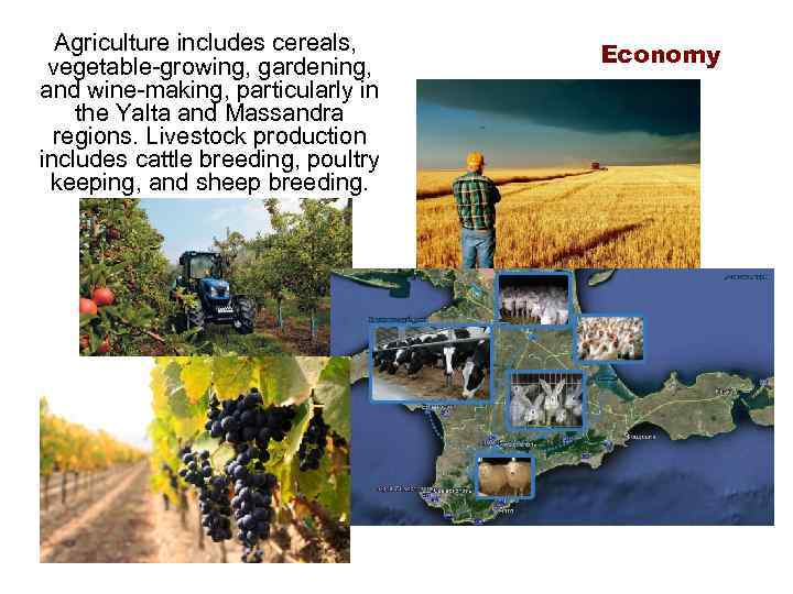 Agriculture includes cereals, vegetable-growing, gardening, and wine-making, particularly in the Yalta and Massandra regions.
