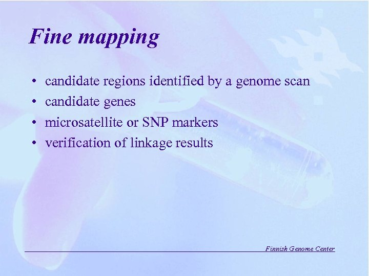 Fine mapping • • candidate regions identified by a genome scan candidate genes microsatellite