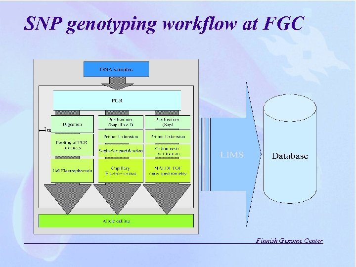 SNP genotyping workflow at FGC Finnish Genome Center