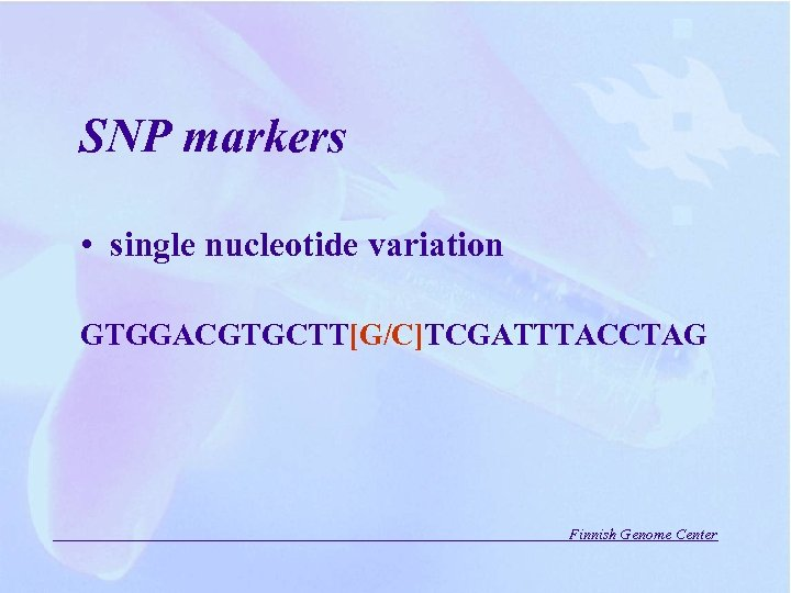 SNP markers • single nucleotide variation GTGGACGTGCTT[G/C]TCGATTTACCTAG Finnish Genome Center