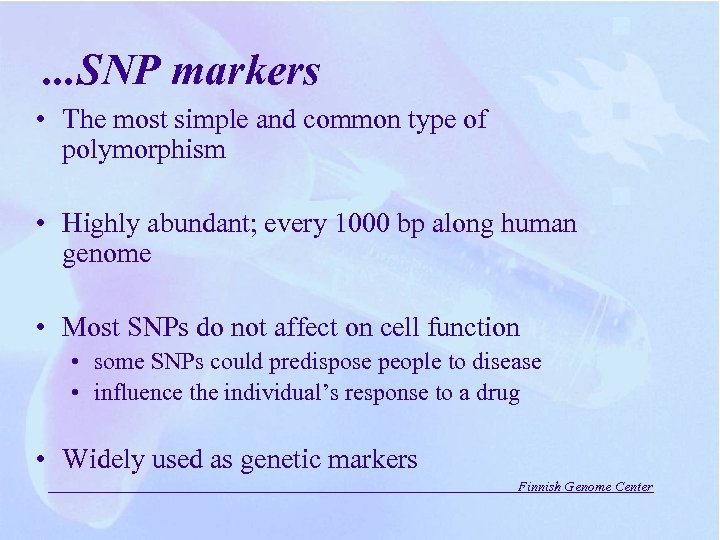 . . . SNP markers • The most simple and common type of polymorphism