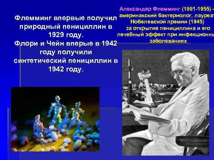 Александер Флемминг (1881 -1955) – Флемминг впервые получил америнакский бактериолог, лауреат Нобелевской премии (1945)