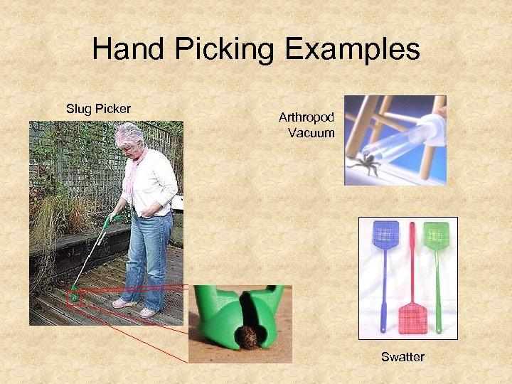 Hand Picking Examples Slug Picker Arthropod Vacuum Swatter
