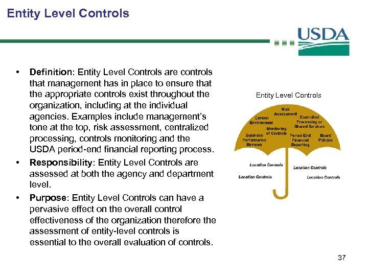 Entity Level Controls • • • Definition: Entity Level Controls are controls that management