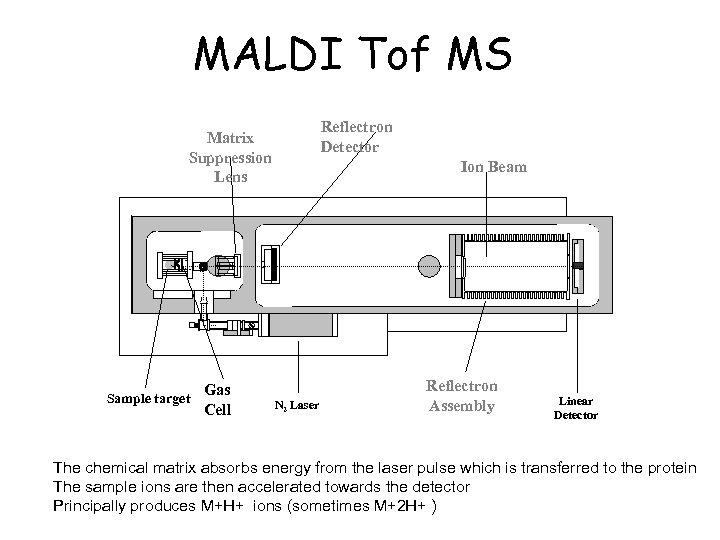 MALDI Tof MS Reflectron Detector Matrix Suppression Lens Sample target Gas Cell Ion Beam