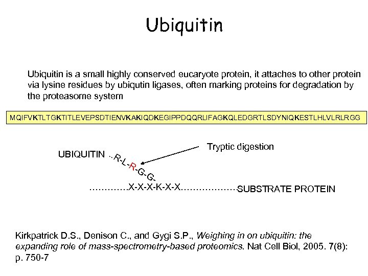 Ubiquitin is a small highly conserved eucaryote protein, it attaches to other protein via