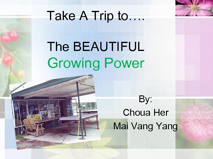 Take A Trip to…. The BEAUTIFUL Growing Power By: Choua Her Mai Vang Yang