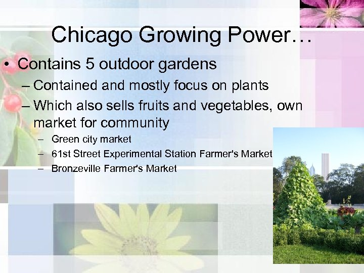 Chicago Growing Power… • Contains 5 outdoor gardens – Contained and mostly focus on