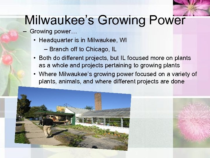 Milwaukee's Growing Power – Growing power… • Headquarter is in Milwaukee, WI – Branch