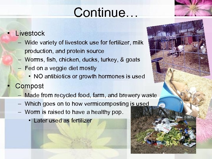 Continue… • Livestock – Wide variety of livestock use for fertilizer, milk production, and