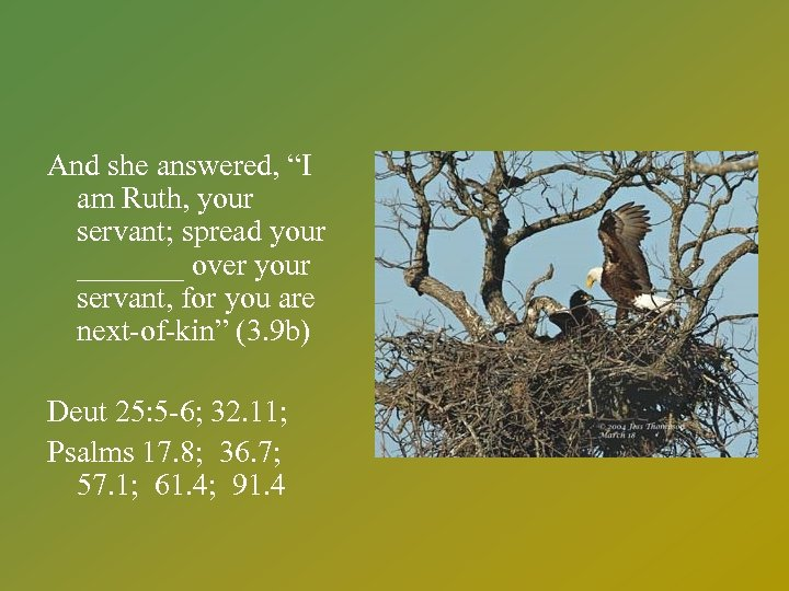 """And she answered, """"I am Ruth, your servant; spread your _______ over your servant,"""