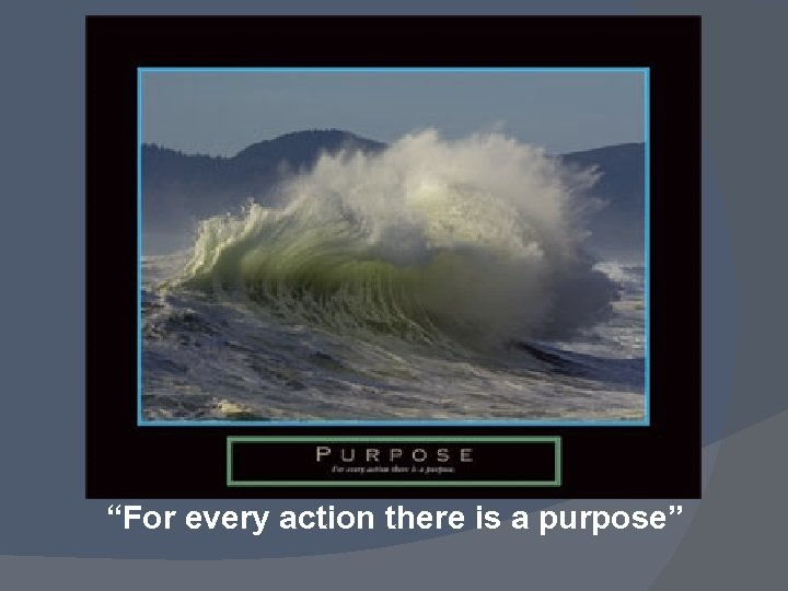 """""""For every action there is a purpose"""""""