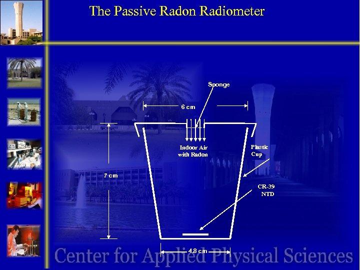 The Passive Radon Radiometer Sponge 6 cm Indoor Air with Radon Plastic Cup 7