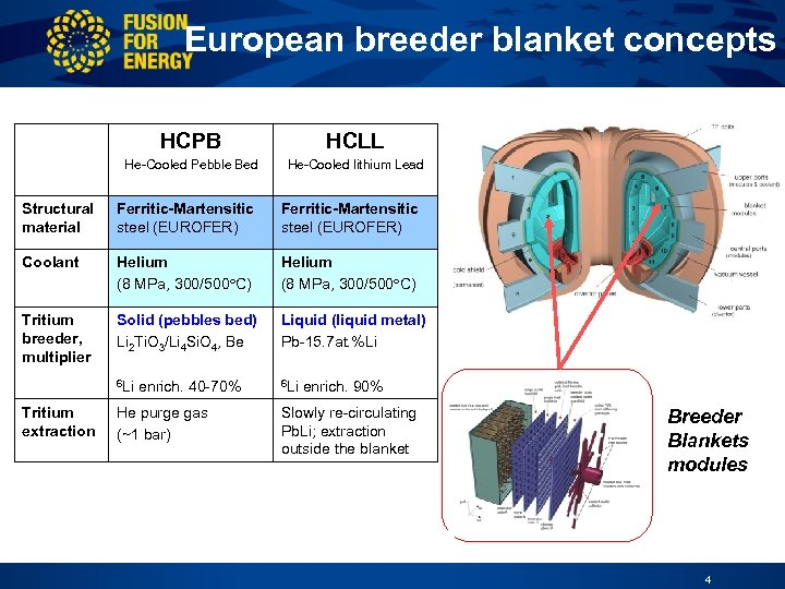 International Workshop on Ceramic Breeder Blanket