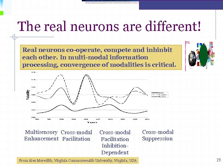 The real neurons are different! Real neurons co-operate, compete and inhinbit each other. In