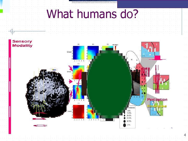 What humans do? 4