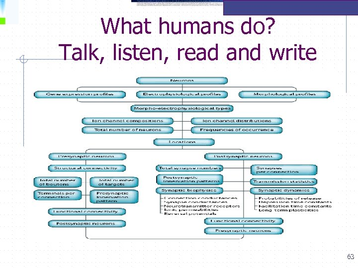 What humans do? Talk, listen, read and write 63