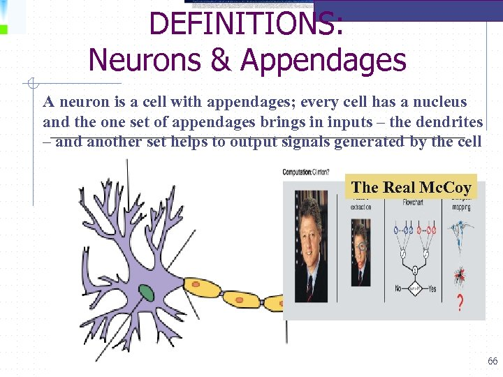 DEFINITIONS: Neurons & Appendages A neuron is a cell with appendages; every cell has