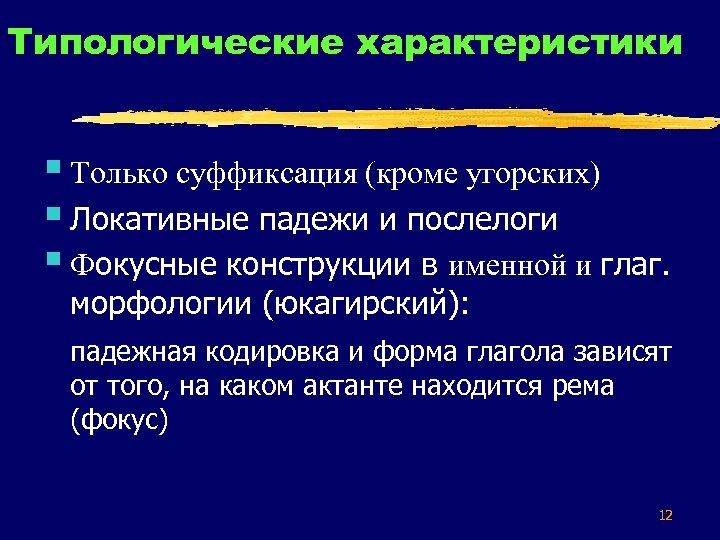 Типологические характеристики § Только суффиксация (кроме угорских) § Локативные падежи и послелоги § Фокусные