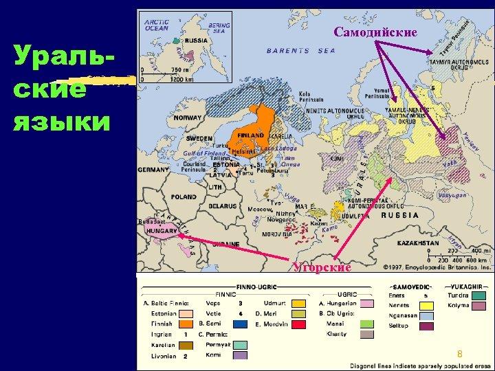 Уральские языки Самодийские Угорские 8