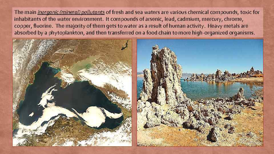 The main inorganic (mineral) pollutants of fresh and sea waters are various chemical compounds,