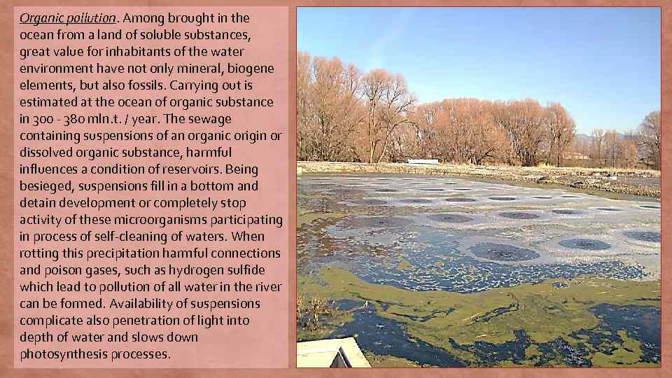 Organic pollution. Among brought in the ocean from a land of soluble substances, great