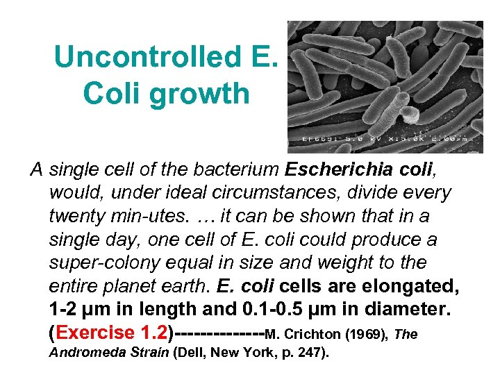 Uncontrolled E. Coli growth A single cell of the bacterium Escherichia coli, would, under