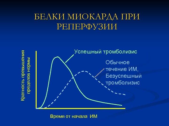Кратность превышения пределов нормы БЕЛКИ МИОКАРДА ПРИ РЕПЕРФУЗИИ Успешный тромболизис Обычное течение ИМ, Безуспешный