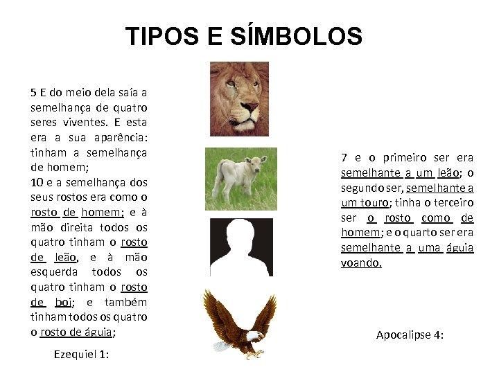 TIPOS E SÍMBOLOS 5 E do meio dela saía a semelhança de quatro seres
