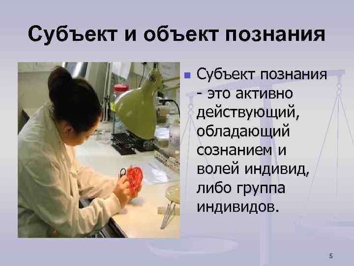 Субъект и объект познания n Субъект познания - это активно действующий, обладающий сознанием и