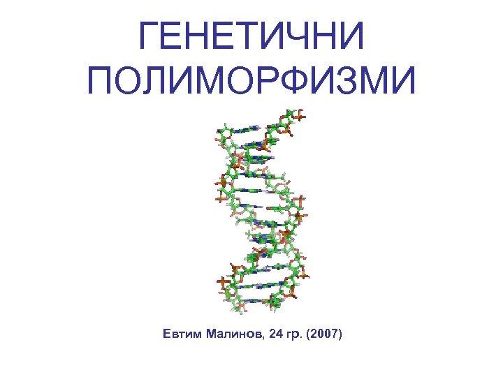 ГЕНЕТИЧНИ ПОЛИМОРФИЗМИ Евтим Малинов, 24 гр. (2007)