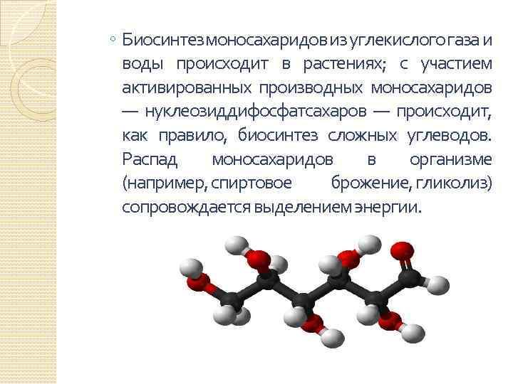 ◦ Биосинтез моносахаридов из углекислого газа и воды происходит в растениях; с участием активированных