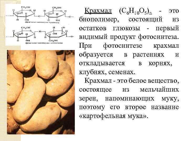 Крахмал (C 6 Н 10 О 5)n - это биополимер, состоящий из остатков глюкозы