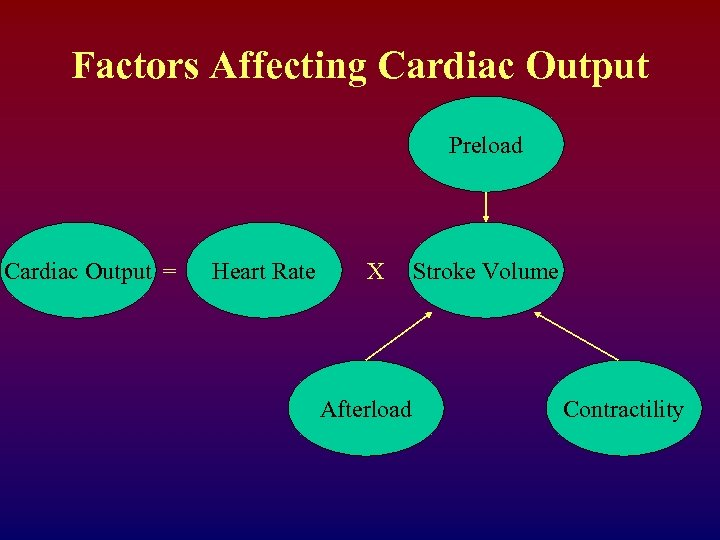 Factors Affecting Cardiac Output Preload Cardiac Output = Heart Rate X Afterload Stroke Volume