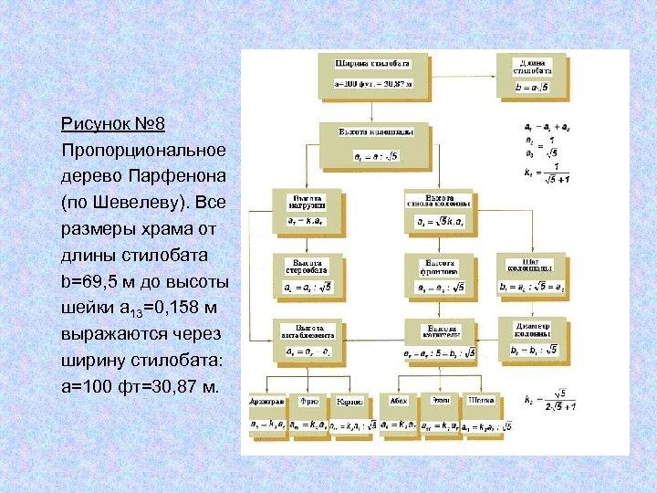 Рисунок № 8 Пропорциональное дерево Парфенона (по Шевелеву). Все размеры храма от длины стилобата