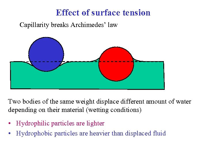 Effect of surface tension Capillarity breaks Archimedes' law Two bodies of the same weight