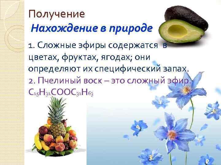 Получение Нахождение в природе 1. Сложные эфиры содержатся в цветах, фруктах, ягодах; они определяют