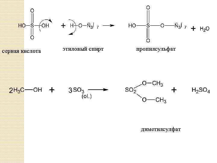 серная кислота этиловый спирт пропилсульфат диметилсулфат