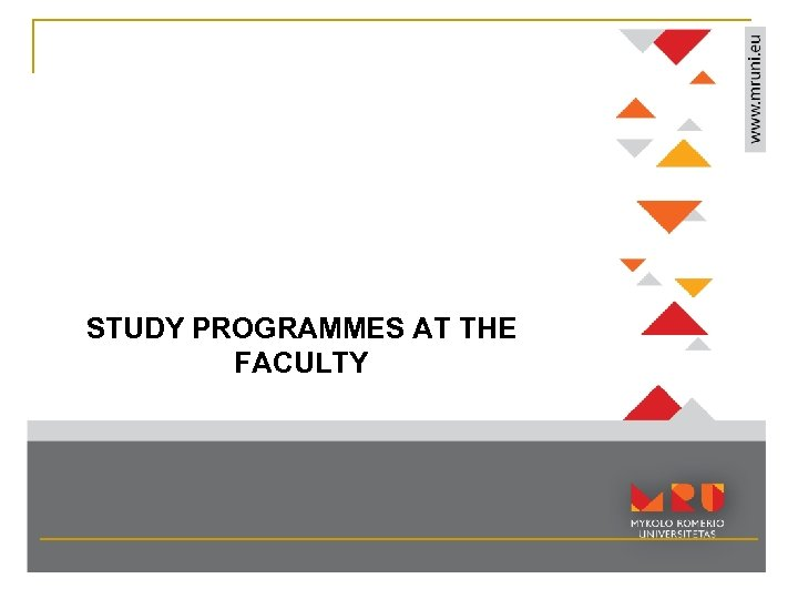 STUDY PROGRAMMES AT THE FACULTY